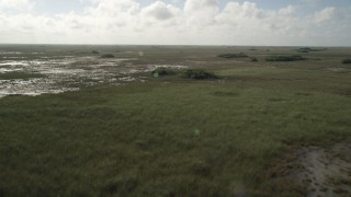 AX0030_052 - 5K stock footage aerial video of flying over marshland, ascend and tilt to marshes, Florida Everglades, Florida