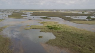 AX0030_067 - 5K stock footage aerial video of flying over marshland, Florida Everglades, Florida