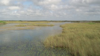 AX0030_069 - 5K stock footage aerial video of flying low over marshes, Florida Everglades, Florida