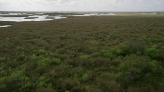 AX0030_080 - 5K stock footage aerial video of flying over trees and marshland, Florida Everglades, Florida