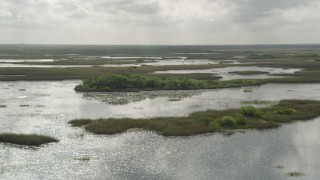AX0030_086 - 5K stock footage aerial video of flying by cluster of trees surrounded by marshland, Florida Everglades, Florida