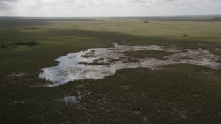 AX0030_092 - 5K stock footage aerial video of flying over marshland, descending toward marshes, Florida Everglades, Florida