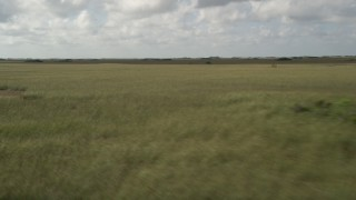 AX0030_094 - 5K stock footage aerial video of flying by a marshland, Florida Everglades, Florida