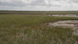 AX0030_097 - 5K stock footage aerial video of flying low over marshland, Florida Everglades, Florida