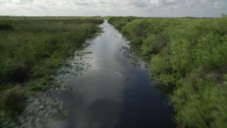 AX0030_106 - 5K stock footage aerial video of following river with birds flying along the surface, Florida Everglades, Florida