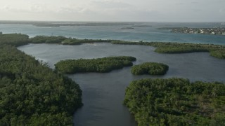 AX0032_155 - 5K stock footage aerial video of flying over mangroves, Saint Lucie Inlet Preserve State Park, Stuart, Florida