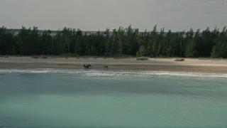 AX0033_027 - 5K stock footage aerial video of tracking horseback riders on the beach along blue waters, Fort Pierce, Florida