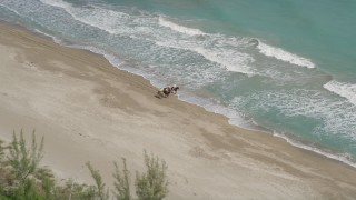 AX0033_029 - 5K stock footage aerial video of horseback riders on the beach, Fort Pierce, Florida