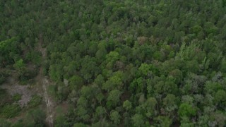 AX0034_062 - 5K stock footage aerial video of flying over forests and clearings, La Belle, Florida