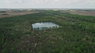 AX0034_063 - 5K stock footage aerial video of flying over forest and a lake, La Belle, Florida