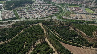 AX0159_165 - 8K stock footage aerial video flying over orange grove orchards toward tract homes, Irvine, California