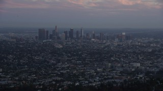 AX0162_106 - 8K stock footage aerial video flying over hilltop palm trees to reveal Downtown Los Angeles, California at twilight