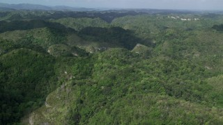 AX101_050 - Aerial stock footage of Tree covered mountains and jungle, Karst Forest, Puerto Rico