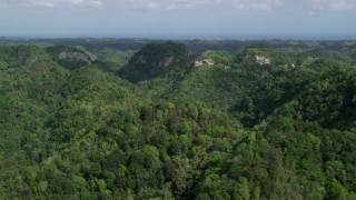 AX101_054 - Aerial stock footage of 5k Aerial Video Flying through lush jungle and mountains, Karst Forest, Puerto Rico