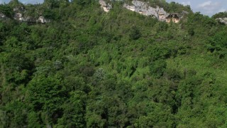 AX101_061 - 5k stock footage aerial video of Lush dense forest approaching rocky slope, Karst Forest, Puerto Rico