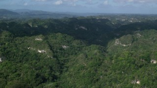 AX101_063 - 5k stock footage aerial video Flying over the tops of thick jungle, Karst Forest, Puerto Rico