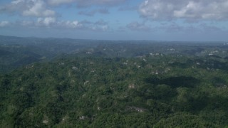 AX101_067 - 5k stock footage aerial video Flying over the tops of lush green forests, Karst Forest, Puerto Rico