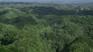 AX101_075 - 5k stock footage aerial video of Lush green trees of the jungle, Karst Forest, Puerto Rico