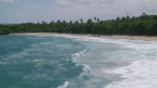 AX101_188 - 5k stock footage aerial video Flying over a beach and palm trees along crystal blue waters,  Manati, Puerto Rico