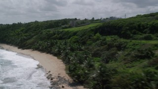 AX101_191 - 5k stock footage aerial video of Lush vegetation along a beach, Manati, Puerto Rico