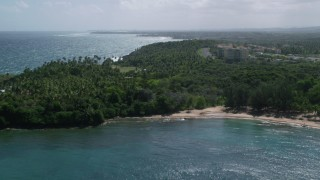 AX101_210 - 5k stock footage aerial video of a Palm tree covered coast along blue water, Vega Alta, Puerto Rico