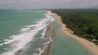 AX102_019 - 5k stock footage aerial video of Tree lined beach and clear turquoise water, Loiza, Puerto Rico