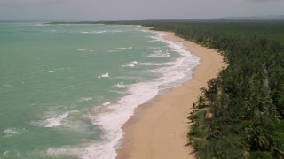 AX102_022 - 5k stock footage aerial video of Tree lined beach along turquoise waters, Loiza, Puerto Rico