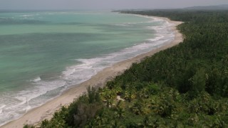 AX102_029 - 5k stock footage aerial video of a Beach bordered by jungle and turquoise waters, Loiza, Puerto Rico