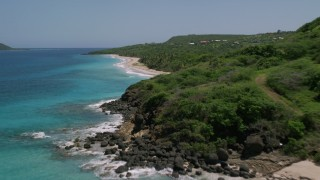 AX102_130 - 5k stock footage aerial video of Palms trees and Caribbean beach along turquoise waters, Culebra, Puerto Rico