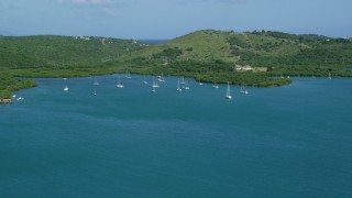 AX102_168 - 5k stock footage aerial video of Sailboats in sapphire blue waters along a tree filled coast, Culebra, Puerto Rico