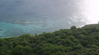 AX103_092 - 5k stock footage aerial video of Jungle and Caribbean beach along turquoise blue waters, Culebrita, Puerto Rico