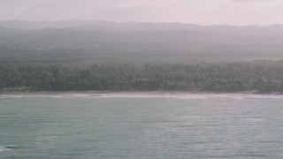 AX103_130 - 5k stock footage aerial video of Jungle by Caribbean beach, Rio Grande, Puerto Rico
