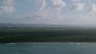 AX103_139 - 5k stock footage aerial video of a Beachside Caribbean jungle and turquoise blue waters, Loiza, Puerto Rico