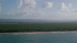 AX103_140 - 5k stock footage aerial video of a Beachside Caribbean jungle and turquoise blue waters, Loiza, Puerto Rico