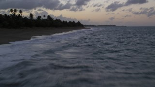 AX104_102 - 5k stock footage aerial video of Blue waters along Caribbean beach with palm trees, Dorado, Puerto Rico, twilight