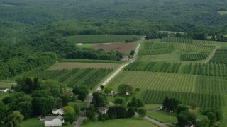 AX107_113 - 5K stock footage aerial video orbiting orchards, East Palestine, Ohio