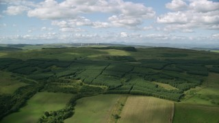 AX110_004 - 6K stock footage aerial video approach forest and near farmland, Banton, Scotland
