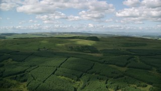 AX110_005 - 6K stock footage aerial video fly over Scottish forest, Banton, Scotland