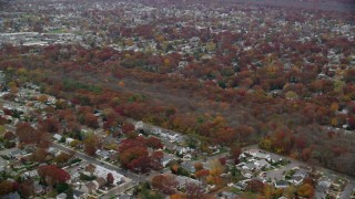 AX117_052 - 6K stock footage aerial video approach trees in a nature preserve in Autumn, Seaford, New York