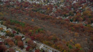 AX117_053 - 6K stock footage aerial video approach nature preserve trees in Autumn, Seaford, New York
