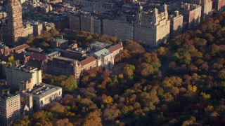 AX118_191 - 6K stock footage aerial video orbit Museum of Natural History and Autumn leaves at sunrise in New York City