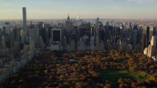 AX118_195 - 6K stock footage aerial video approaching Central Park with Autumn leaves and Midtown at sunrise in New York City