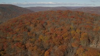 AX119_152 - 6K stock footage aerial video fly over dense forest in Autumn, Westchester County, New York