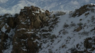 AX125_064 - 6K stock footage aerial video track bighorn sheep racing up a snowy mountain slope in winter on Antelope Island, Utah