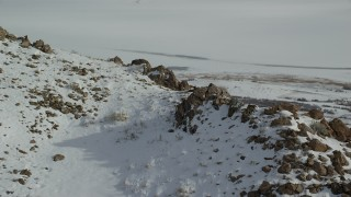 AX125_075 - 6K stock footage aerial video approach bighorn sheep on a rocky mountain slope of winter snow, Antelope Island, Utah