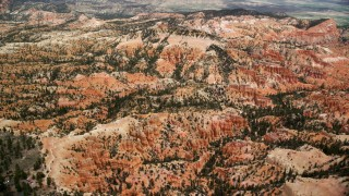 AX130_442 - 6K stock footage aerial video of passing by groups of hoodoos, buttes, trees and vegetation, Bryce Canyon National Park, Utah