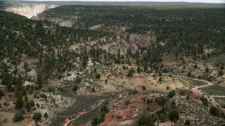 AX131_043 - 6K stock footage aerial video follow dirt road, forest, Grand Staircase-Escalante National Monument, Utah