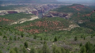 AX136_138 - 6K stock footage aerial video of flying over Manti-LA Sal National Forest, tilt to reveal Arch Canyon, Utah