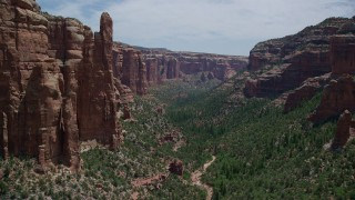 AX136_148 - 6K stock footage aerial video of flying over trees in a canyon and past tall rock formations, through Arch Canyon, Utah