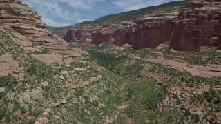 AX136_159 - 6K stock footage aerial video of flying low over trees and vegetation in Arch Canyon, Utah